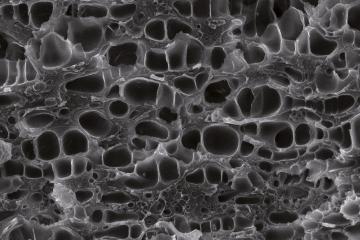 Polymerschaum | Polymer Engineering Bayreuth