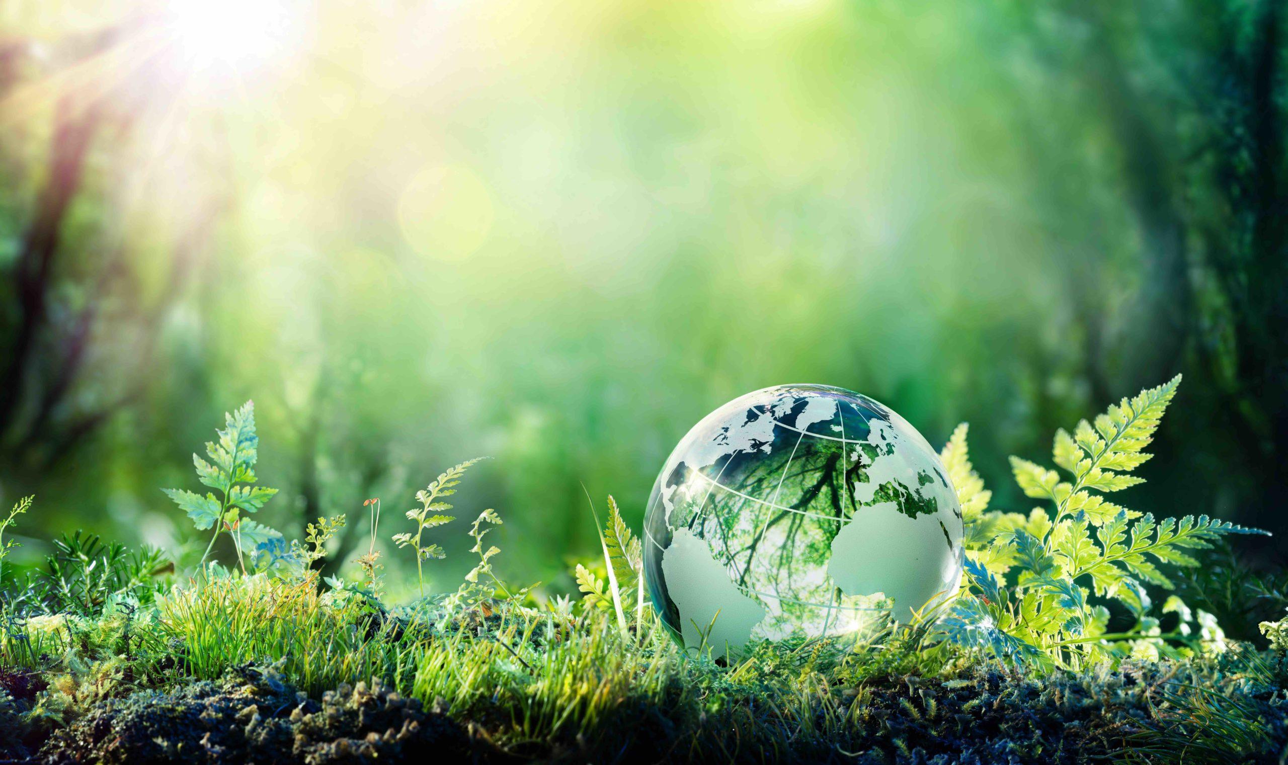 Nachhaltigkeit | Polymer Engineering Bayreuth